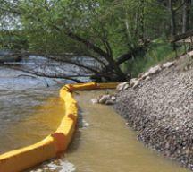 Shoreline Restoration 1